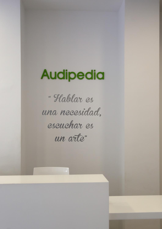 audipedia01