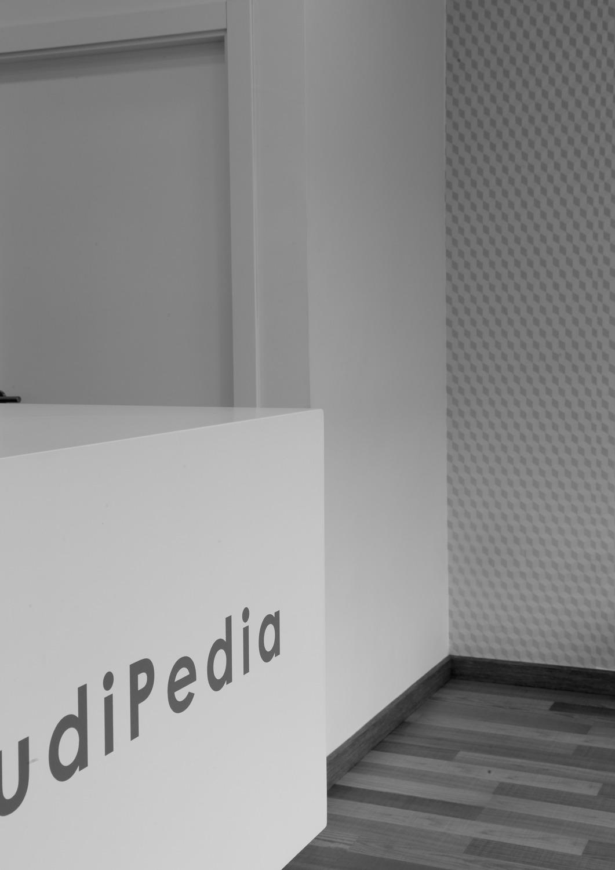 audipedia05
